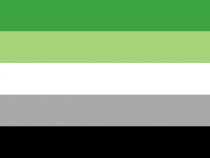 QueerEvents.ca - Queer Flags - Aromantic Flag Image